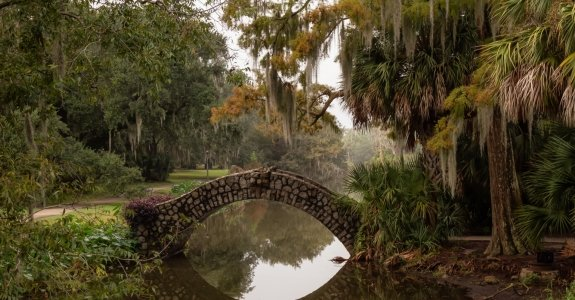 Bridge over a river duing a foggy morning. Taken in City Park, New Orleans, Louisiana, United States.