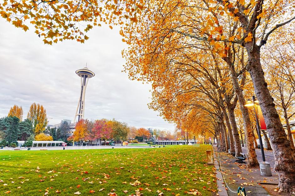 Fall foliage in Seattle